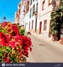 view of a peaceful street in a small mediterranean village with a