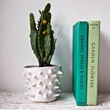 handmade white spiky ceramic cactus vase by kabinshop