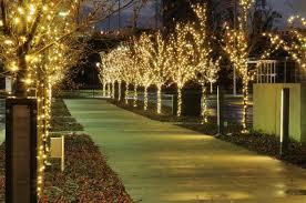 christmas light installation calgary fairy light canopies and festoon lighting monitorlighting co uk