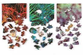 microscopic jigsaw puzzles nervous system