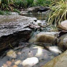 Design A Bed by The Rainforest Garden How To Design A Dry Creek Bed 10 Tips