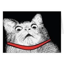 Gasp Meme - surprised cat gasp meme greeting card zazzle com
