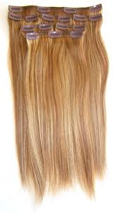 clip extensions 21 remy clip in hair extensions free shipping