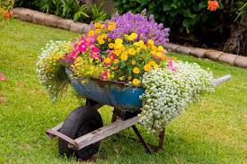 garden planters ideas clever plant container ideas the micro