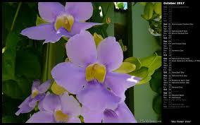 mlewallpapers com sky flower vine calendar