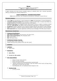 professional fresher resume new resume format for freshers resume cool new professional resume
