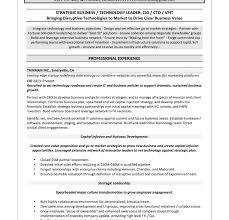 Cio Sample Resume by Download Cio Resume Haadyaooverbayresort Com