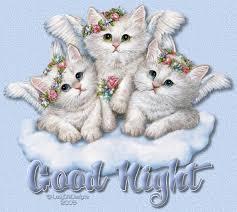 adorable kitties wishes