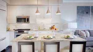 the 5 best apartment kitchens in dc apartminty