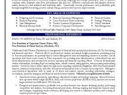 sample resume for senior business analyst business analyst job resume business analyst job description