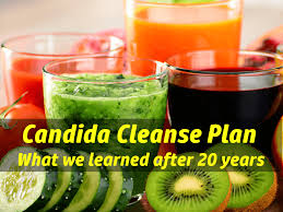 candida cleanse what we learned in 20 years of yeast cleansing
