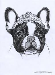 25 trending french bulldog drawing ideas on pinterest french