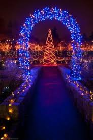 Bellevue Botanical Garden Lights Vandusen Botanical Garden Christmas Lights Dream Garden