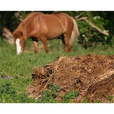 Horse Manure Vegetable Garden by Manure Advice For Use In Gardens Hints U0026 Tips For Using Animal