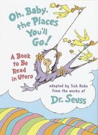 oh baby the places you ll go oh baby the places you ll go by tish rabe