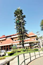 baguio gives giant christmas tree a rest inquirer news