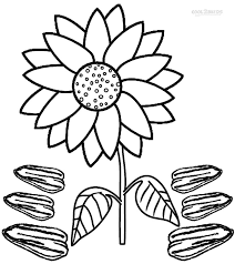 printable sunflower coloring pages kids cool2bkids