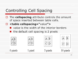 Table Cell Spacing Xp 1 Tutorial 4 Designing A Web Page With Tables Ppt Download