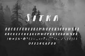 sitka small font the bible according to einstein a scientific