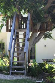 Simple Backyard Tree Houses by 15 Best Treehouses Images On Pinterest Simple Tree House