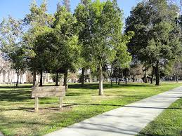 san jose working to revive forlorn st park the registry