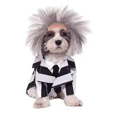 Dog Halloween Costumes Beetlejuice Dog Costume Black White Target