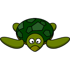 cartoon turtle clipart cliparts cartoon turtle free download