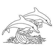 sea animals coloring pages 111 sea animals sea creatures
