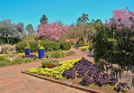 Botanical Gardens South Carolina How To Start A Flower Garden In South Carolina 3 Things To