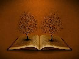 cool book wallpapers on kubipet com
