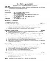 Insurance Resume Objective Examples 2000 Word Essay On Accountability In The Army Professional