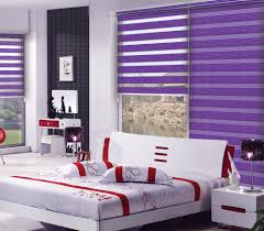 fashion zebra roller sheer blinds sunscreen zebra blinds fabric