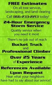 affordable tree service crossville tn tree services and removal crossville tn