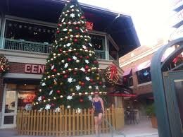 i run for wine christmas tree decorating themes