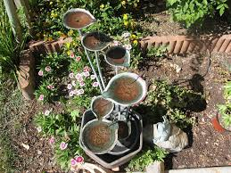how to grow vegetables on a hillside