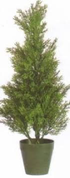 twelve 2 foot outdoor artificial cedar topiary trees uv