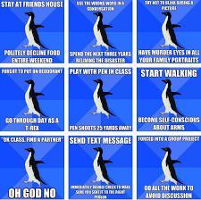 Funny Penguin Memes - best penguin memes penguin best of the funny meme
