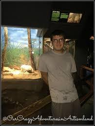 finding florida tampa u0027s lowry park zoo