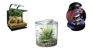 top 10 best fish tank u0026 aquarium kits heavy com