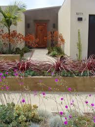 Modern Front Yard Desert Landscaping With Palm Tree And Ca Friendly Design Ideas Gardens Yards And Landscaping