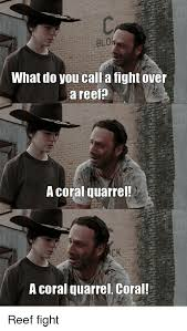 Hey Carl Meme - what do you call a fight over a reef a coral quarrel ck a coral