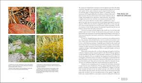 native plant definition planting in a post wild world designing plant communities for