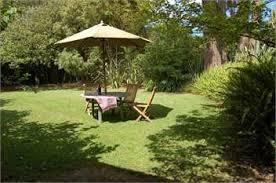 Backyard Bar Takapuna Auckland Holiday Homes Accommodation Rentals Baches And Vacation