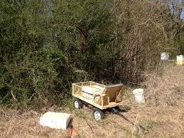 bees shooflyfarmblog