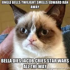 Christmas Grumpy Cat Meme - funny christmas memes 24 pics grumpy cat my nerdyness