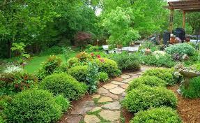 Backyard Plant Ideas Decorating A 200 Square Meter Garden Houz Buzz