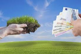 zahlungsansprüche landwirtschaft rechtzeitig direktzahlungen sichern pflanzenbau