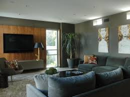 magnificent tv room accent wall home design 1026