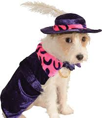 pet costume halloween rubies costume halloween classics collection pet costume find