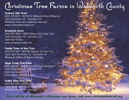 how to start a christmas tree farm 10 tips to start a christmas